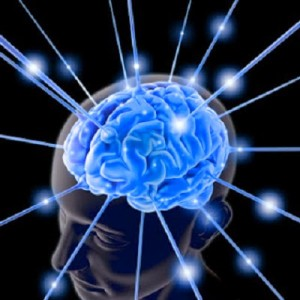 Improve Memory and Brain Power Diet For Memory Power
