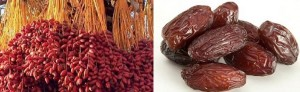 Health Benefits of  Dates Fruit Cure Sexual Disability and Many Diseases