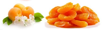 Health Benefits-Disease Cure Apricot