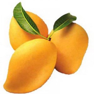 Amazing! Mango cures-Cancer-Eye&Skin Problems-Kidney Stone-Diabetes-Heat Stroke and Reduce Weight