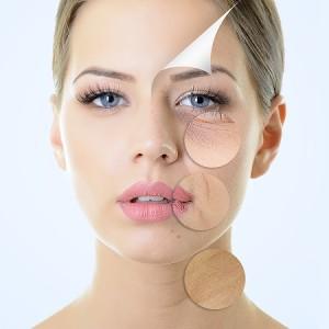 Facial Course-Skin Care-AHA Facial-Green Apple Facial