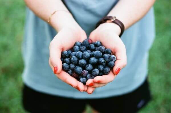 Blueberries Protect Eyes