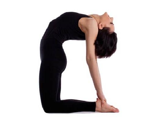 Ustraasan Yoga